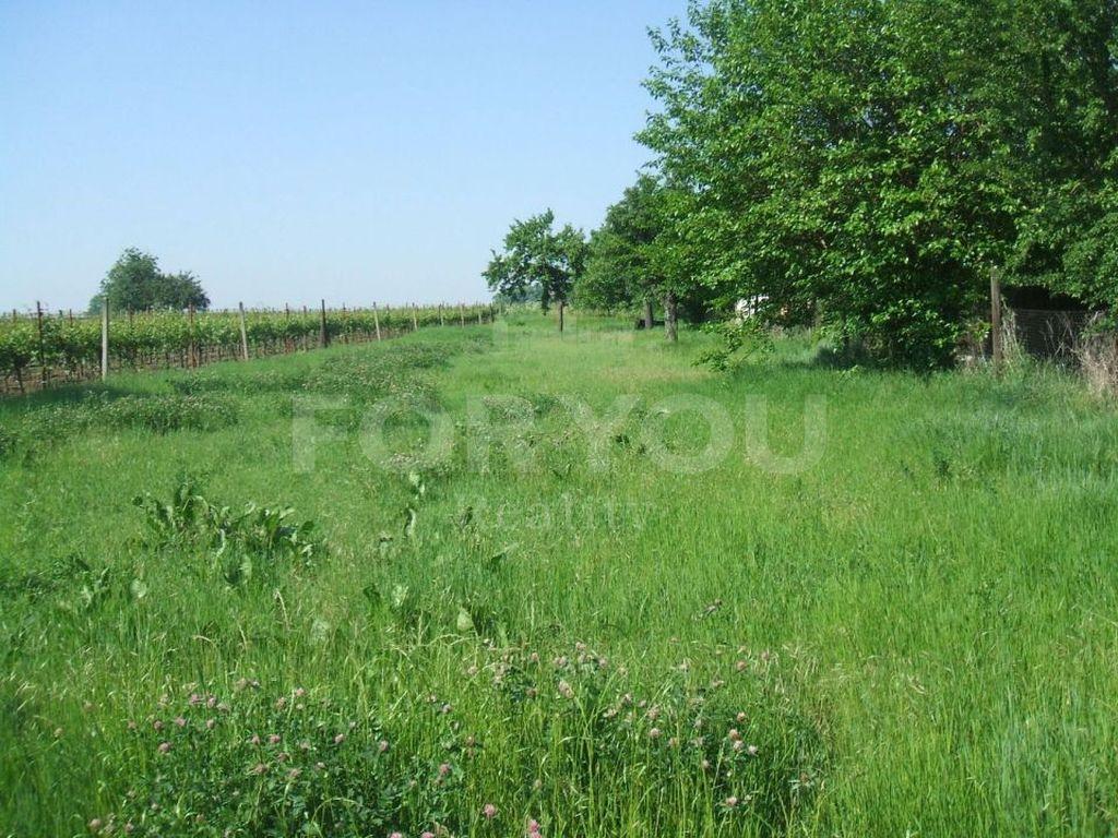 Pozemek, Smilovice 1000 m2
